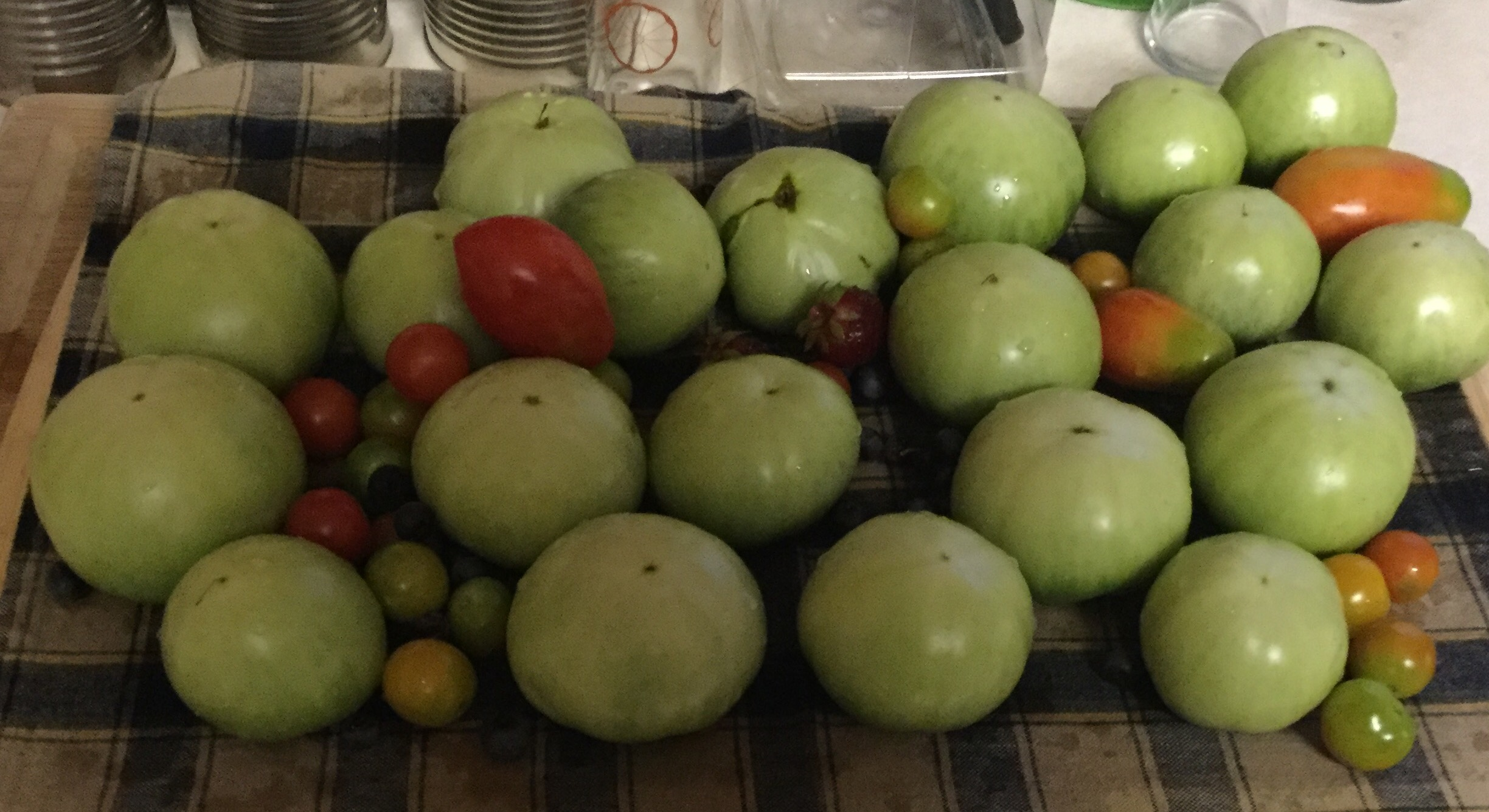 Sunday, July 3, 2016 – Today's Pickings