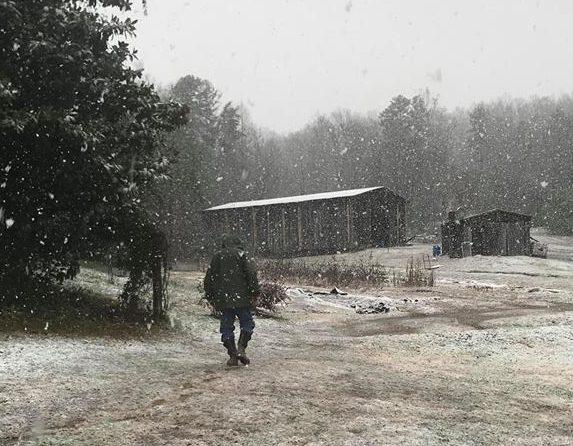 A Season on the Farm, December